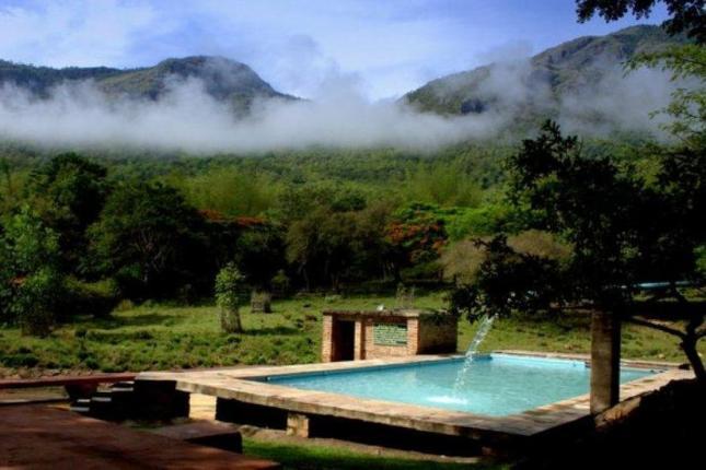 Jungle Hut Masinagudi Madumalai Photos Reviews Deals