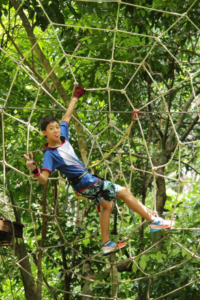 Day At Treetop Adventure Park